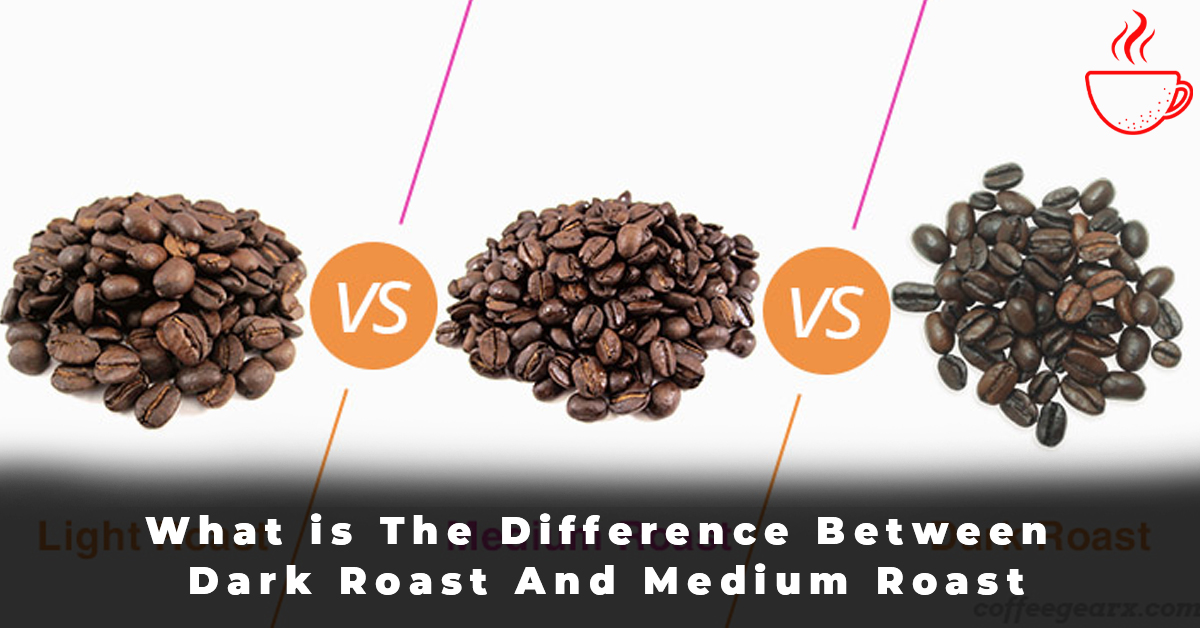What is The Difference Between Dark Roast And Medium Roast
