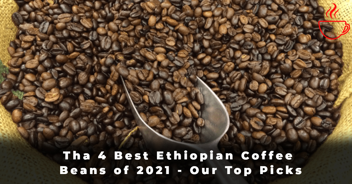 Tha 4 Best Ethiopian Coffee Beans of 2021 - Our Top Picks