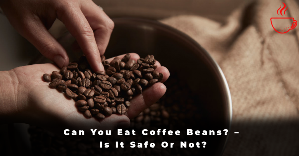 Can You Eat Coffee Beans – Is It Safe Or Not